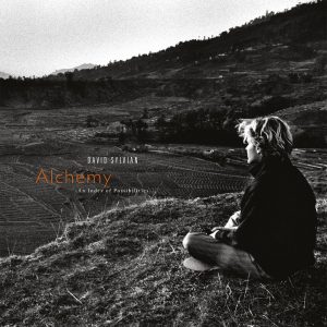 David Sylbian - Alchemy An Index Of Possibilities vinyl