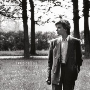 David Sylvian - Brilliant Trees vinyl
