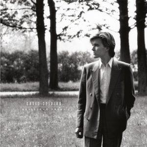 David Sylvian - Brilliant Trees vinyl